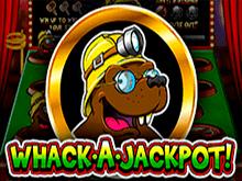 Играйте на деньги в автомат Whack A Jackpot